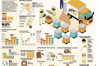 El Negocio de la Miel en Nicaragua